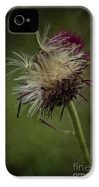 IPhone 4 Case featuring the photograph Ready To Fly Away... by Clare Bambers