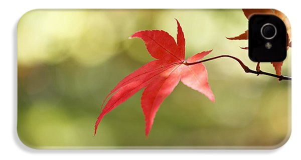 IPhone 4 Case featuring the photograph Red Leaf. by Clare Bambers