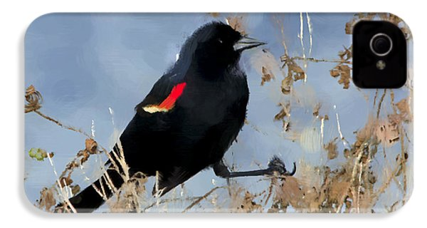 Redwing Blackbird IPhone 4 / 4s Case by Betty LaRue