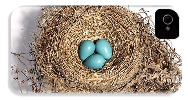 Robins Nest With Eggs IPhone 4 / 4s Case by Ted Kinsman