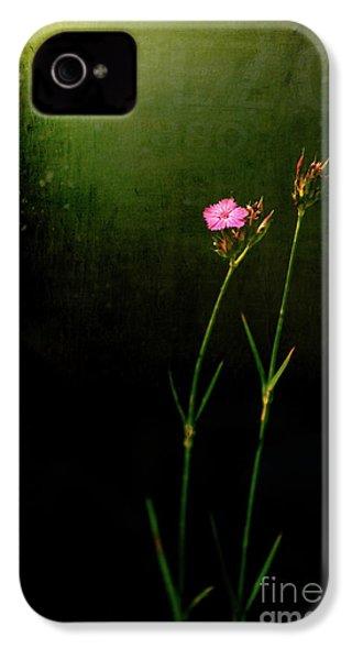 Seeking Light IPhone 4 Case by Silvia Ganora
