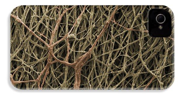 Sem Of Mycelium On Mushrooms IPhone 4 / 4s Case by Ted Kinsman