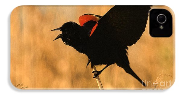 Singing At Sunset IPhone 4 Case by Betty LaRue