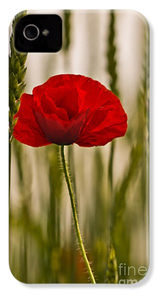 IPhone 4 Case featuring the photograph Sunset Glow. by Clare Bambers