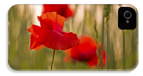 IPhone 4 Case featuring the photograph Sunset Poppies. by Clare Bambers