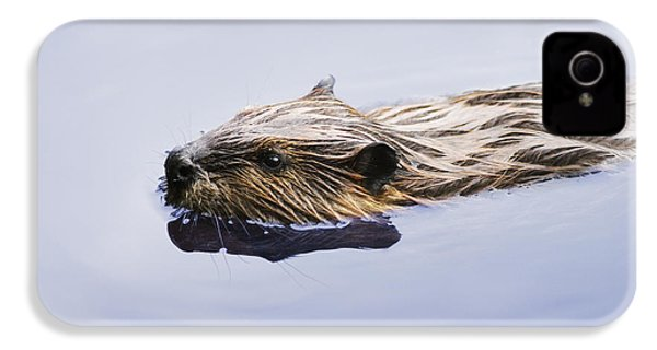 View Of Beaver, Chaudiere-appalaches IPhone 4 Case by Yves Marcoux