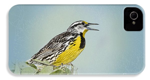 Western Meadowlark IPhone 4 Case by Betty LaRue