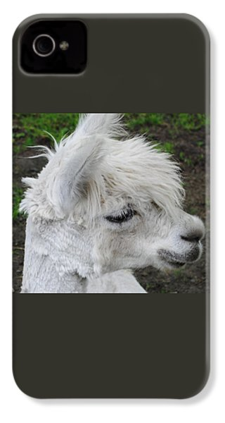 Baby Llama IPhone 4 Case