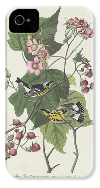 Black And Yellow Warbler IPhone 4 / 4s Case by Anton Oreshkin