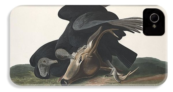 Black Vulture IPhone 4 Case by Rob Dreyer