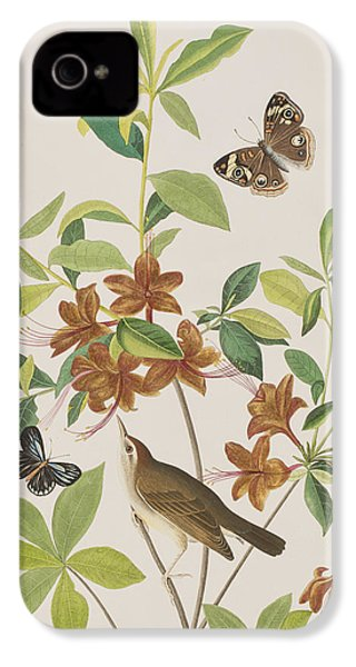 Brown Headed Worm Eating Warbler IPhone 4 / 4s Case by John James Audubon