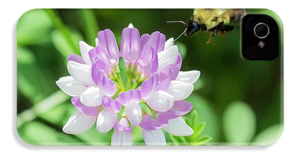Bumble Bee Pollinating A Flower IPhone 4 Case by Ricky L Jones