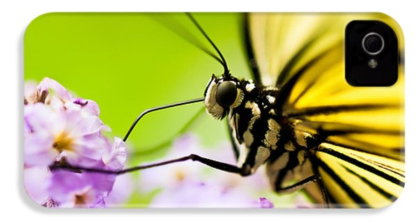 Butterfly IPhone 4 Case by Sebastian Musial