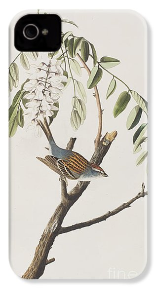 Chipping Sparrow IPhone 4 / 4s Case by John James Audubon