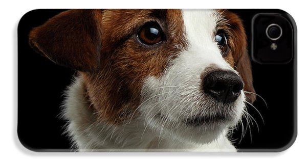 Closeup Portrait Of Jack Russell Terrier Dog On Black IPhone 4 Case by Sergey Taran