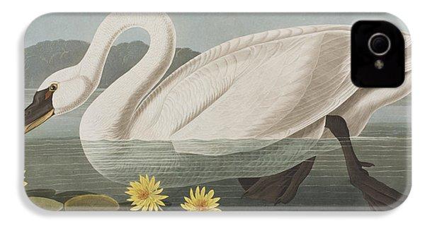 Common American Swan IPhone 4 / 4s Case by John James Audubon