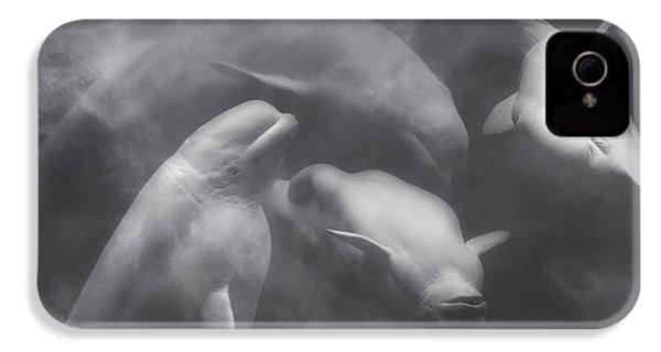 Dancing Belugas  IPhone 4 Case by Betsy Knapp