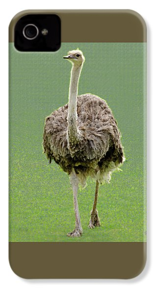 Emu IPhone 4 / 4s Case by Ellen Henneke