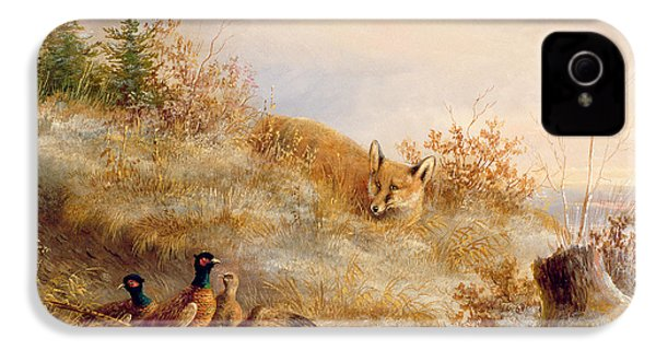 Fox And Pheasants In Winter IPhone 4 Case by Anonymous