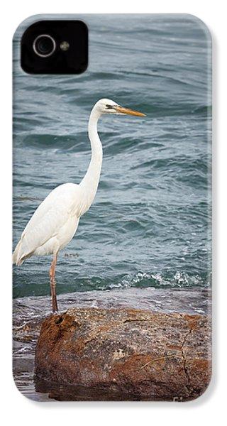Great White Heron IPhone 4 Case by Elena Elisseeva