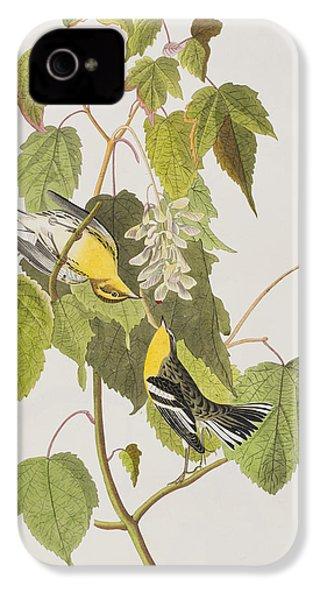 Hemlock Warbler IPhone 4 Case