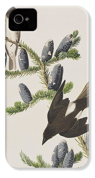 Olive Sided Flycatcher IPhone 4 Case