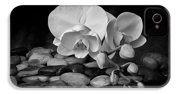 Orchid - Sensuous Virtue IPhone 4 Case by Tom Mc Nemar