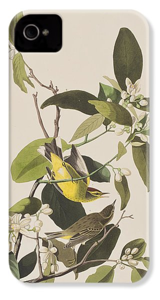 Palm Warbler IPhone 4 Case