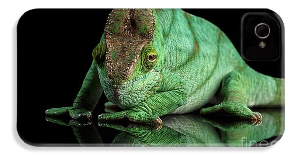 Parson Chameleon, Calumma Parsoni Orange Eye On Black IPhone 4 Case by Sergey Taran