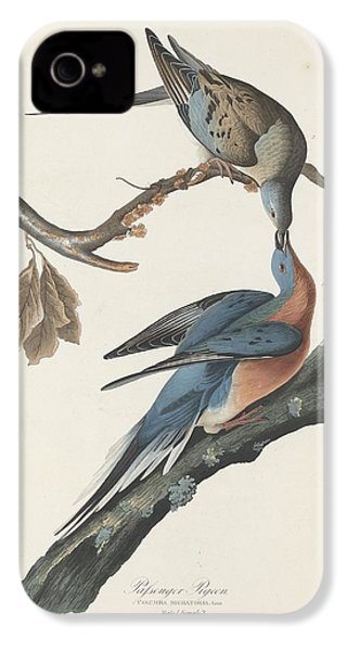 Passenger Pigeon IPhone 4 / 4s Case by Anton Oreshkin