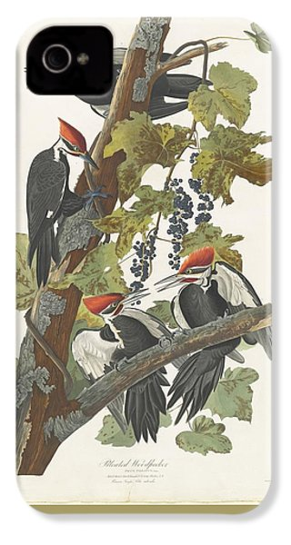 Pileated Woodpecker IPhone 4 Case by John James Audubon