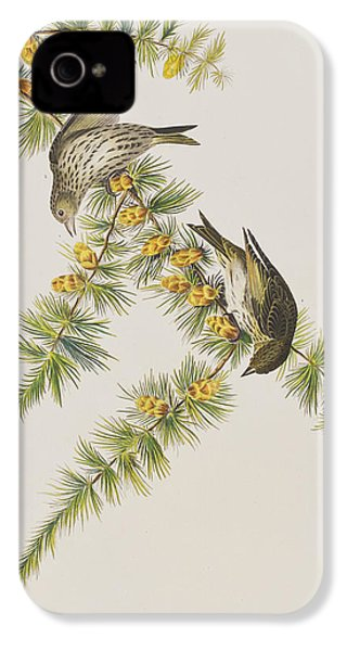 Pine Finch IPhone 4 Case