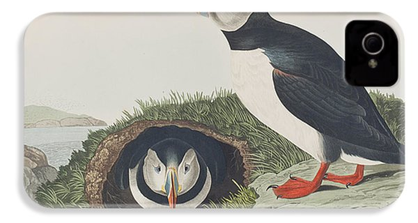 Puffin IPhone 4 / 4s Case by John James Audubon