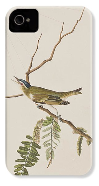 Red Eyed Vireo IPhone 4 Case
