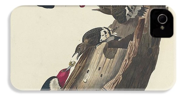 Red-headed Woodpecker IPhone 4 Case by Rob Dreyer