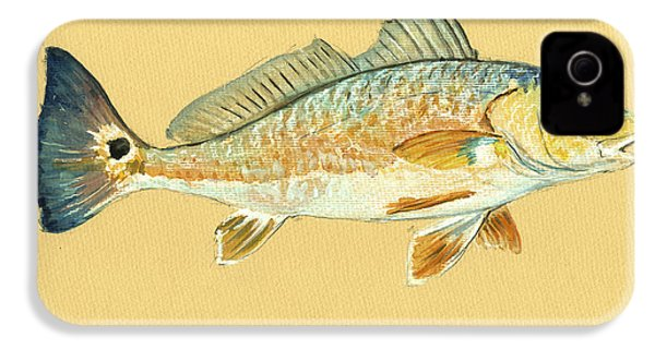 Redfish Painting IPhone 4 / 4s Case by Juan  Bosco