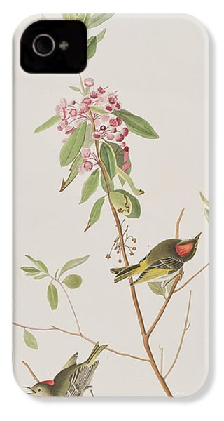 Ruby Crowned Wren IPhone 4 Case by John James Audubon