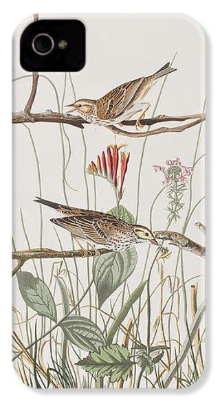 Savannah Finch IPhone 4 / 4s Case by John James Audubon