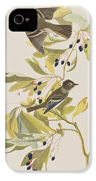 Small Green Crested Flycatcher IPhone 4 Case