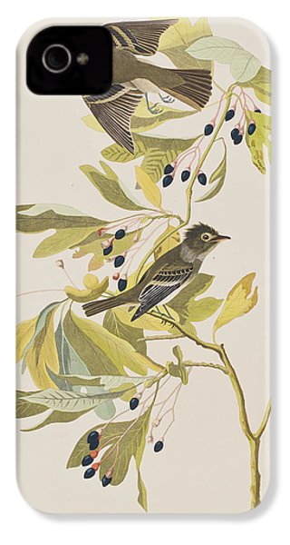 Small Green Crested Flycatcher IPhone 4 Case by John James Audubon