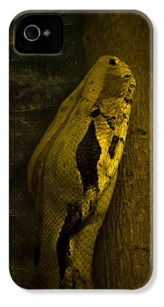 Snake IPhone 4 Case by Svetlana Sewell