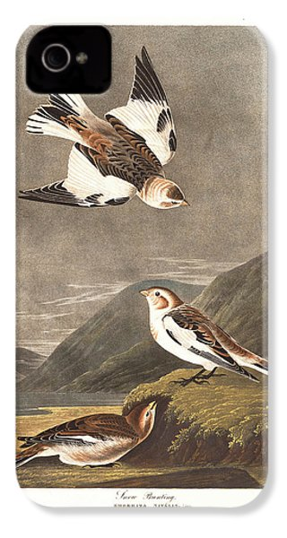 Snow Bunting IPhone 4 Case by Rob Dreyer