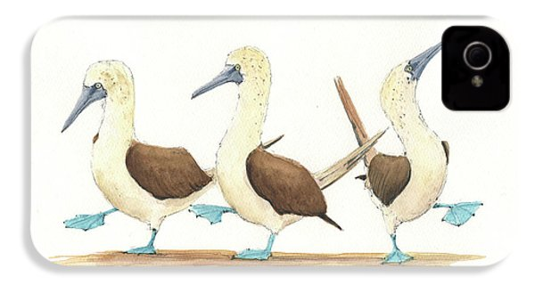 Three Blue Footed Boobies IPhone 4 Case by Juan Bosco
