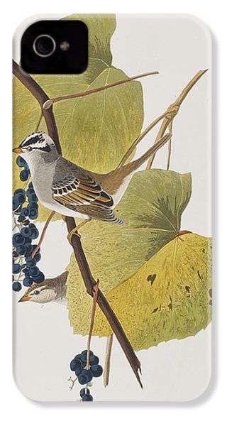 White-crowned Sparrow IPhone 4 / 4s Case by John James Audubon