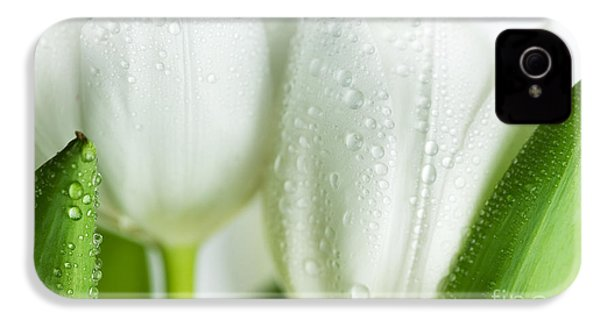 White Tulips IPhone 4 Case by Nailia Schwarz