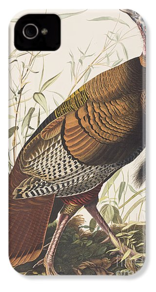Wild Turkey IPhone 4 / 4s Case by John James Audubon