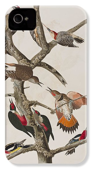 Woodpeckers IPhone 4 Case by John James Audubon