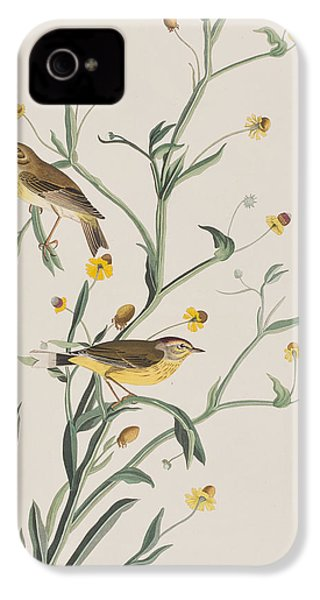 Yellow Red-poll Warbler IPhone 4 Case