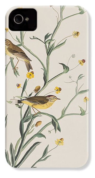 Yellow Red-poll Warbler IPhone 4 / 4s Case by John James Audubon