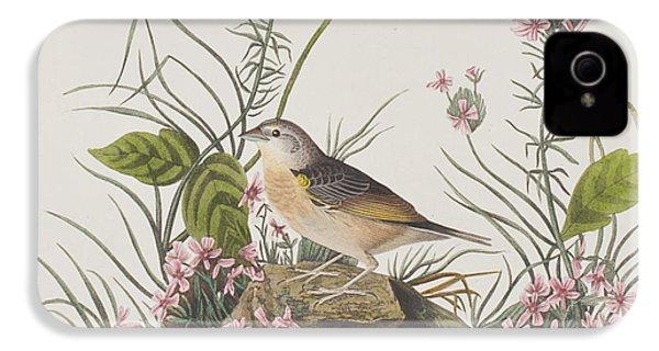 Yellow-winged Sparrow IPhone 4 Case by John James Audubon